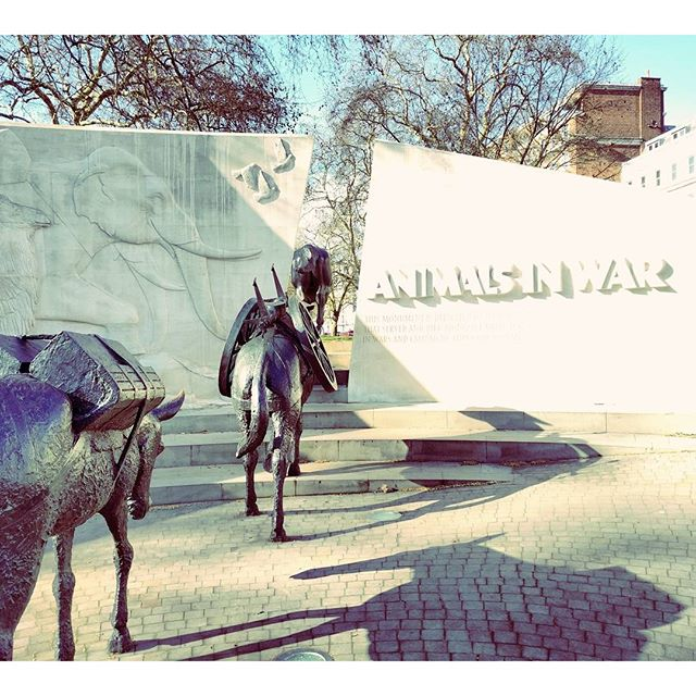 Animals in War Memorial | London | Ellen Says Hola | Travel Blog