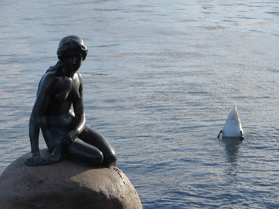 the little mermaid statue copenhagen with a swan butt in the background